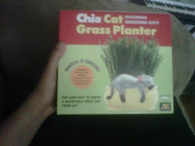 Chia Cat Grass Planter